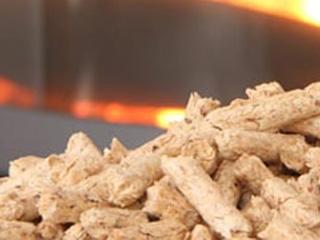 SGA - Utilisation du granulé de bois